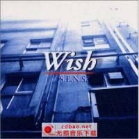 神思者(S.E.N.S) -《神阿,请给我多一点时间》(Wish)[FLAC]115下载