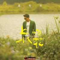 萧煌奇《上水的花》2014 iTunes Plus AAC/百度云