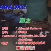 《经典老歌800首》双音轨卡拉OK(原声+伴奏)[MKV]-1-100首