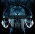 伊凡塞斯新专:Evanescence《Lost Whispers》2017/MP3/BD