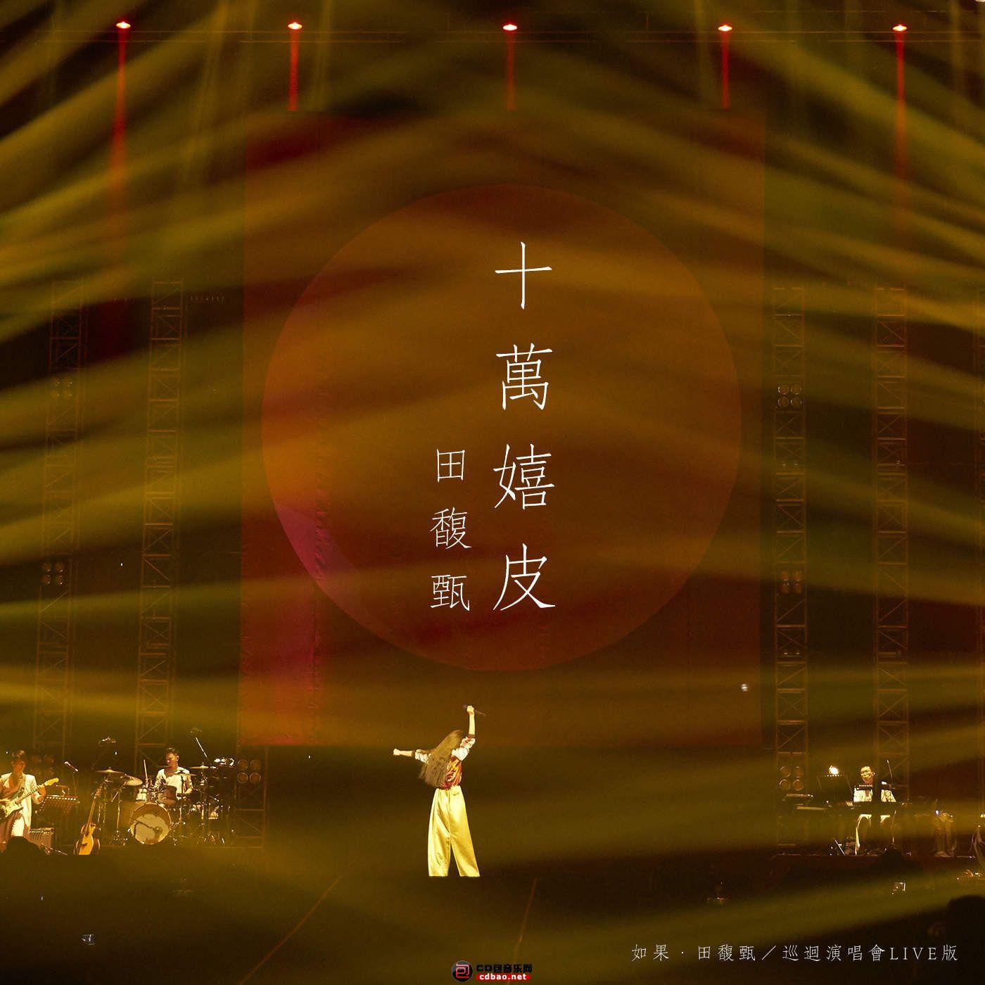 十万嬉皮(如果.田馥甄_ 巡回演唱会Live版) [feat. 田馥甄] - Single.jpg