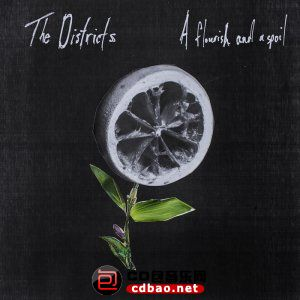 The Districts - A Flourish And A Spoil (2015).jpg