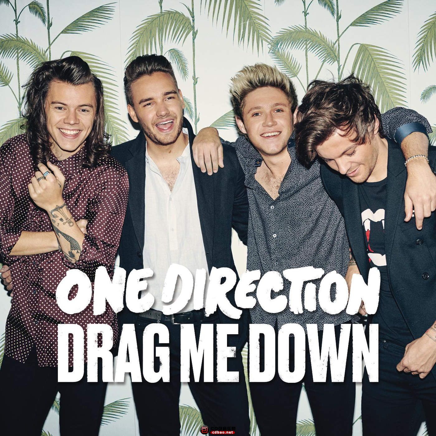 Drag Me Down - Single 2.jpg