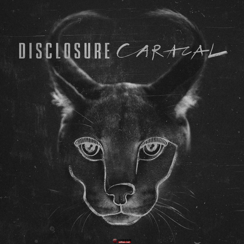 disclosure-caracal.jpg