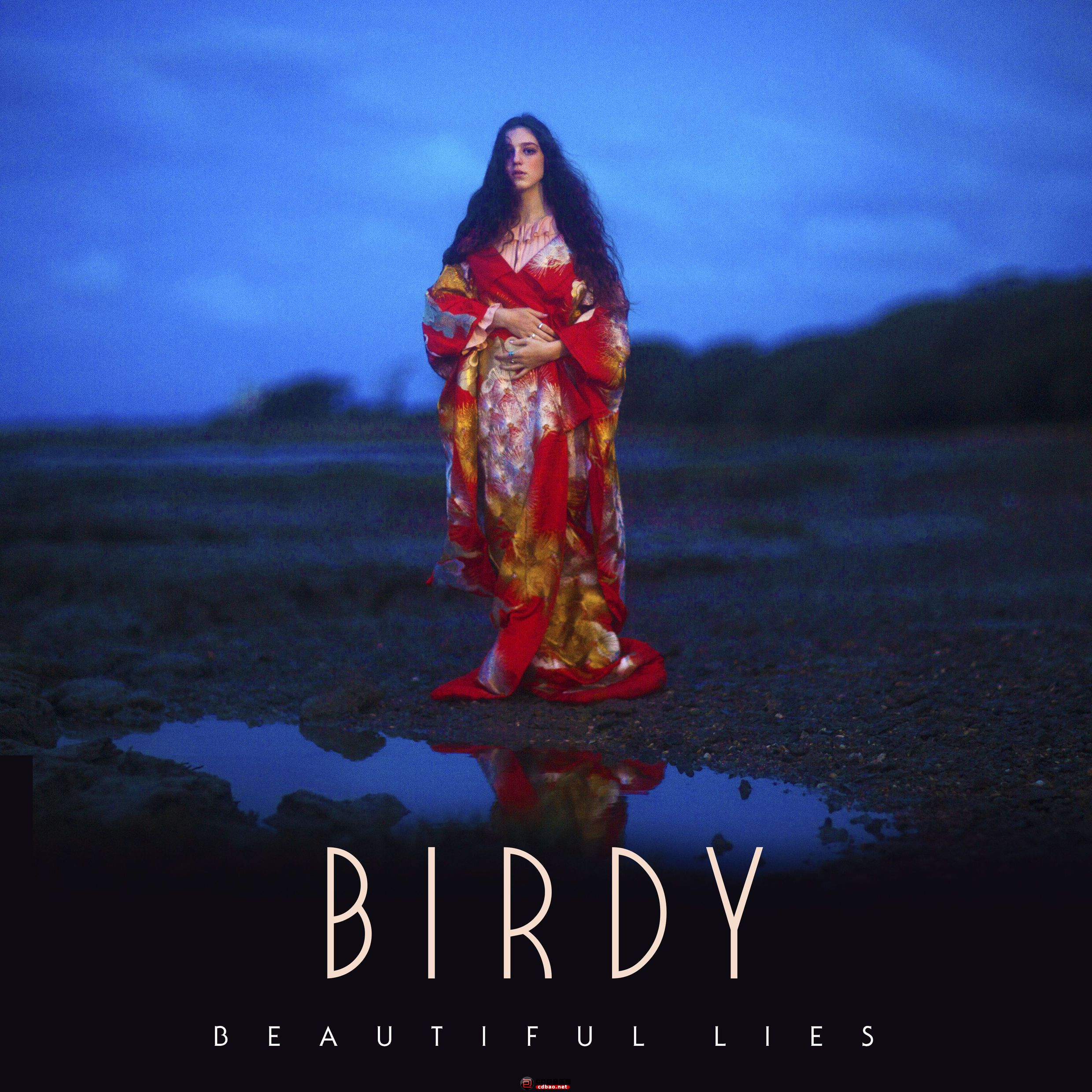 Birdy-Beautiful-Lies-2016.jpg