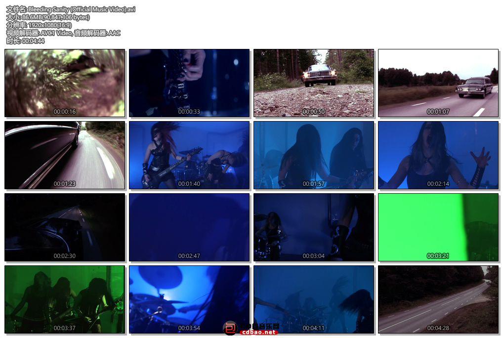 Bleeding Sanity (Official Music Video).jpg