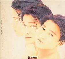 刘德华《爱意》1993/APE/整轨/百度