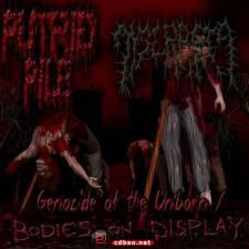 美残死:Putrid Pile《7CD》2003-2012/FLAC/BD